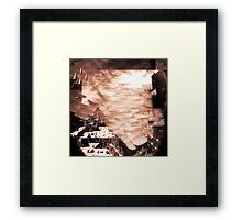 P1430943-P1430945 _P1430947 _GIMP Framed Print