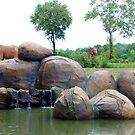 Elephants by lroof
