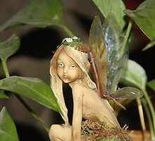 Fairy In The Houseplant by Ginger  Barritt