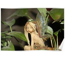 Fairy In The Houseplant Poster