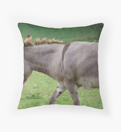 It's called humililty, I'm really not shy at all! Throw Pillow
