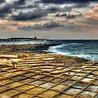 Saltpans hewn in the living limestone rock in Bahar ic-Caghaq, Malta by leslievella64