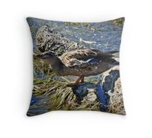 Exhilarated Throw Pillow