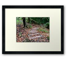 Step into the wood's Framed Print