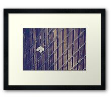 The Strong One Framed Print