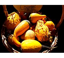 Vignette Photo of Decorative Gourds in a Wicker Basket - Fall Season w/ Autumn Colours  Photographic Print
