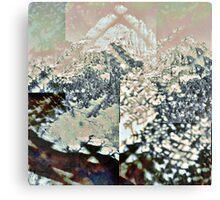P1430973-P1430975 _P1430981 _P1430983 _GIMP Canvas Print