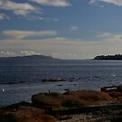 View to Little Cumbrae by Susan Dailey