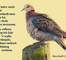 Die roekoek-man by Rina Greeff