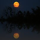Real Moon, false reflection by tanmari