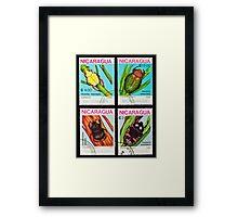 Beetles stamps collection. Framed Print