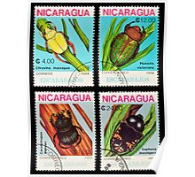 Beetles stamps collection. Poster