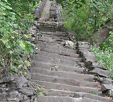 A Long Way Up by Jill Vadala