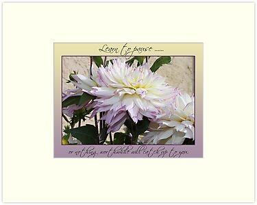 Dahlia with quote by Sandra Foster