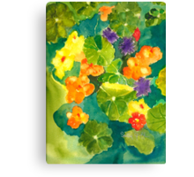 Nasturtiums I Have Known and Loved Canvas Print