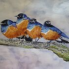 FOUR ANGRY BIRDIES by Marilyn Grimble
