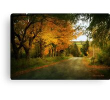 Going Home to the Hills and Valleys Canvas Print