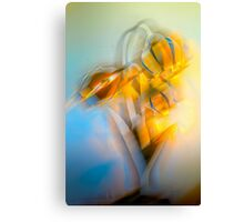 Lamplight : Color Abstract Canvas Print