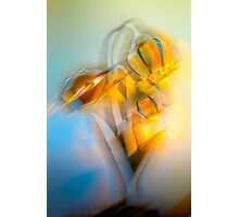 Lamplight : Color Abstract Photographic Print