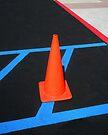 """""""Warning: Cone Crossing"""" by waddleudo"""