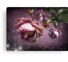 Dusky Pink Roses Canvas Print