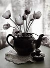 'Lil Pot 'O Poppies by Pene Stevens