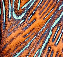 Various Striations by Scott  Cook