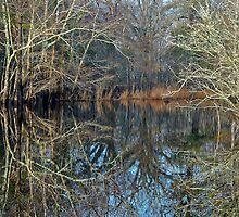 Reaching Across The River by Joe Jennelle