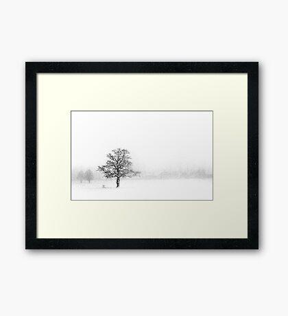 (Near) Whiteout Framed Print