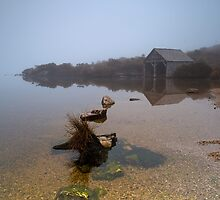 Morning Fog at the Boat Shed by tinnieopener