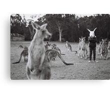 Le lapin et le kangourou Canvas Print