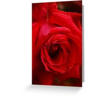 The Queen Of Roses Greeting Card