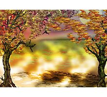 Autumn Tree Print Photographic Print