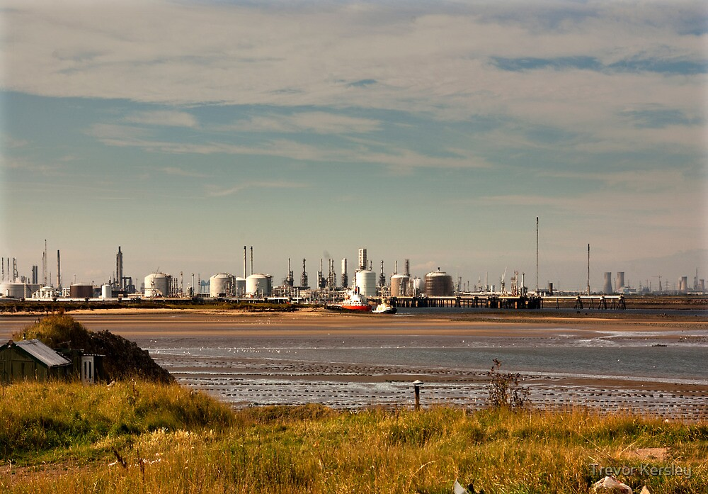 Industry on the River Tees by Trevor Kersley