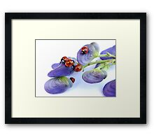 Ladies Day Out... Framed Print