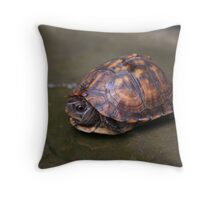 Who Will Stop the Rain? Throw Pillow