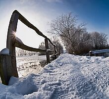 Frozen Paradise 2 by Željko Malagurski