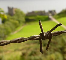 Barbed Wire At Loch Ness by Vicki Spindler (VHS Photography)