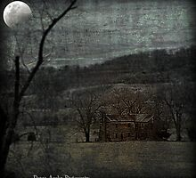 Old House by Donna Anglin Husband