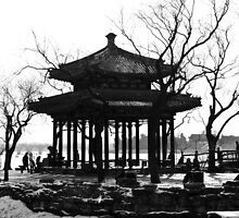 China - Beijing - Summer Palace by Derek  Rogers