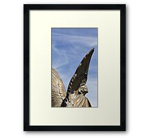 Reach out - Mountain View Cemetery Angel  Framed Print
