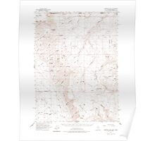 USGS Topo Map Nevada Disaster Peak 320858 1961 62500 Poster