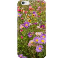 Vibrant, vivacious variety iPhone Case/Skin