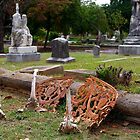 Graveyard Bench by Martha Andreatos