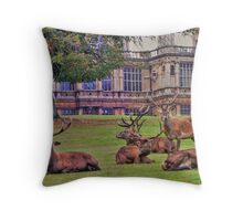 Stags Wollaton Park Throw Pillow