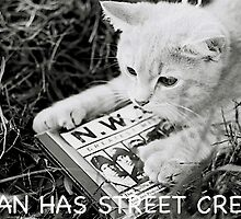 I CAN HAS STREET CRED?? by Justin  McGovern