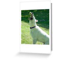 Catcher's Mitt Greeting Card