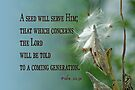 Told to a Future Generation ~ Psalm 22:30 by Robin Clifton