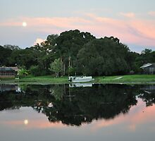 Reflection, Moon and Pink Clouds  by Shelby  Stalnaker Bortone