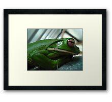 arn't i cute - white lip green tree frog  Framed Print